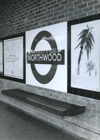 Related object: B/W print; Northwood Underground station, Metropolitan line by Colin Tait, 18 Sep 1964